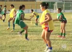 Picos registra novo nome, e Abelhas Rainhas vão disputar a Copa Piauí - Equipe piauiense adota nova nomenclatura em meio à preparação para a disputa da Copa Piauí Feminina 2014. Novo técnico deve ser apresentado ainda em setembro