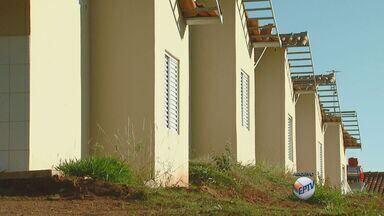 Conjunto habitacional em construção em Rio Claro é invadido por mais de 100 famílias - Conjunto habitacional em construção em Rio Claro é invadido por mais de 100 famílias