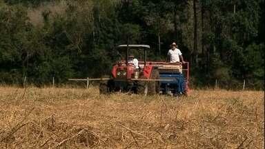 Agricultores do RS aproveitam as chuvas para começar o plantio da safra de verão - No noroeste do estado, o trabalho nas lavouras de milho estão adiantados. Agricultores apostam numa boa safra. A expectativa da Emater é que em todo o Rio Grande do Sul sejam plantados cerca de 1,2 milhão de hectares de milho.