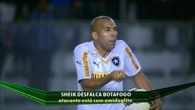 A dois pontos da zona de rebaixamento, Botafogo tem desfalque contra o Inter - Com amigdalite, Sheik está fora do jogo no domingo.