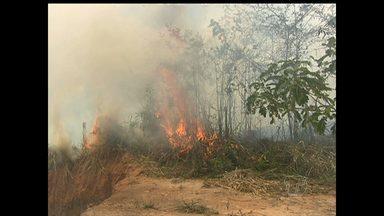 Em Santarém, incêndio atinge área de mata no bairro Ipanema - Fogo e fumaça causou transtornos aos moradores das proximidades do local onde aconteceu o incêndio.