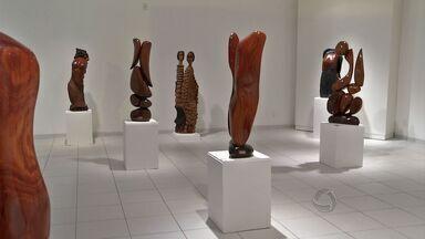 Artista faz exposição com obras de madeiras típicas em Rondonópolis - Artista faz exposição com obras de madeiras típicas.