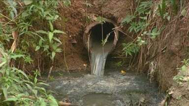 Poluição e baixo nível da água atingem Ribeirão Quilombo em Campinas - O Ribeirão Quilombo, afluente do Rio Piracicaba, está com a água escura por conta da poluição. Além disso, o baixo nível da água, reflexo da estiagem prolongada, agrava a situação.