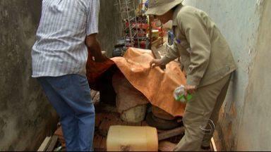 Agentes de combate a dengue intensificam ações em bairros de Campo Grande - Levantamento feito pela prefeitura no mês de setembro foram encontrados 67 focos do mosquito na capital. Em outubro o número aumentou para 109