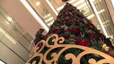 Profissionais usam rapel para montar decoração de Natal de shopping na capital - O pessoal da decoração vai de rapel até o topo da árvore de 11 metros de altura. Serão duas madrugadas de trabalho. Primeiro, os profissionais ficam pendurados por dez horas montando a estrutura. Depois, serão mais dez horas para fazer o acabamento.