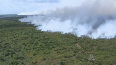 Núcleo de meteorologia do Iepa continua registrando focos de queimadas no Amapá - Núcleo de meteorologia do Iepa continua registrando focos de queimadas no Amapá