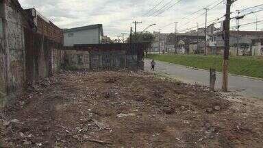 Terrenos abandonados em São Vicente estão diferentes - Reportagem da TV Tribuna cobrou da prefeitura de São VIcente melhorias nesses locais. Local esse onde um aposentado de 80 anos morreu dentro de um buraco
