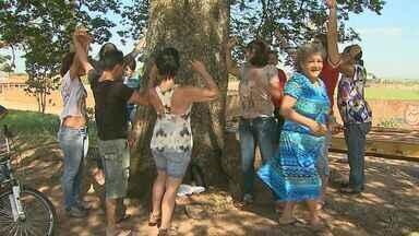 Construção de avenida gera polêmica em Santa Rosa de Viterbo, SP - Moradores falam sobre caso que é motivo de indignação por causa da derrubada de árvores.
