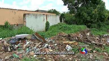 Fiscalização para evitar casos de febre chikungunya em Cuiabá - Fiscalização para evitar casos de febre chikungunya em Cuiabá.