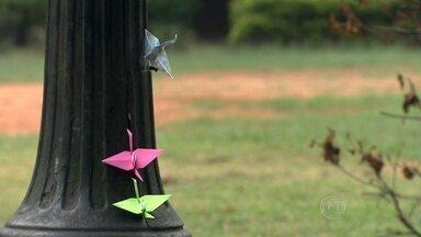 Estudante espalha origamis com mensagens positivas pelas praças da capital - A estudante de jornalismo Marina Pape se inspirou nos japoneses para levar um pouco de felicidade para pessoas desconhecidas. Ela espalha gentileza colocando os passarinhos de papel nas praças da cidade.