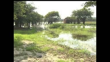 Pescadores reclamam da poluição no lago do Papucu - Eles cobram mais fiscalizações no local para evitar degradação.