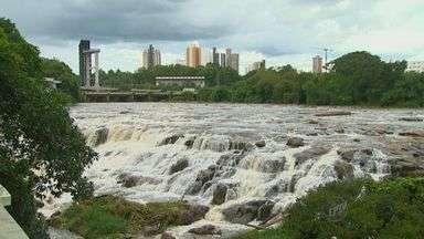 Vazão do Rio Piracicaba aumenta e favorece piracema - Vazão do manancial chegou a 481,7 mil litros de água por segundo na terça-feira (23), segundo o Departamento de Águas e Energia Elétrica (Daee).
