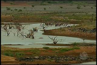 Situação dos reservatórios de água aqui no Sertão é preocupante - As chuvas das últimas semanas não foram suficientes para encher as barragens e os agricultores continuam a ter prejuízos