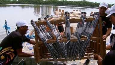 Fogos do show da virada no Recife são biodegradáveis - Material usado nos produtos não polui o meio ambiente.