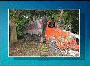 Motorista perde o controle de caminhão, derruba poste e bate em árvore em rodovia do TO - Motorista perde o controle de caminhão, derruba poste e bate em árvore em rodovia do TO