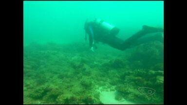 Mergulho arqueológico explora fundo do mar de Iriri, no ES - Equipe encontrou navio que afundou há mais de 40 anos.
