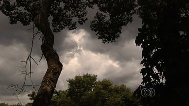Chuva surpreendeu moradores de alguns setores de Goiânia - Céu ficou totalmente nublado e escuro. No setor Cândida de Morais choveu granizo. Fenômeno durou 15 minutos.