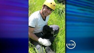Bombeiros resgatam cachorro de penhasco em Cruzeiro - Animal estava no pé do penhasco de cerca de 40 metros