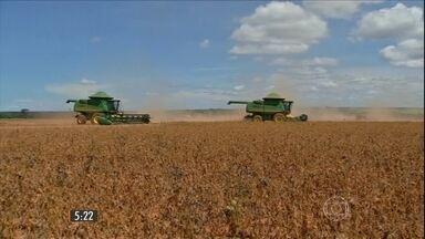 Em MT, a colheita da soja movimenta a economia de muitos municípios - Mato Grosso é o estado que mais produz grãos no país. Resultado do campo reflete na renda do comércio das cidades.