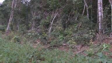 Desaparecido há cinco dias é encontrado morto em Vilhena - O corpo de Dagoberto Moreira foi encontrado, no início da noite de sábado (24), em uma fazenda a 22 quilômetros de Vilhena. A vítima estava desaparecida desde a última segunda-feira (19) e foi localizada já morta por um funcionário da propriedade.