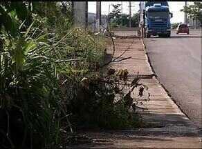 Pedestres reclamam das dificuldades em trafegar pelas calçadas de Gurupi - Pedestres reclamam das dificuldades em trafegar pelas calçadas de Gurupi
