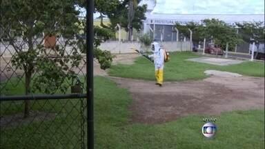 Epidemia de dengue deixa seis mil alunos sem aula em Pirassununga (SP) - As aulas foram suspensas em 34 escolas de Pirassununga, no interior de São Paulo. Desde junho de 2014 até agora, são quase 300 casos de dengue confirmados.