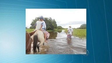 MP pede abertura salas e garantia de transporte de estudantes ribeirinhos em Corumbá (MS) - Na região do Pantanal, estudantes precisam viajar para estudar. Em alguns casos eles têm que caminhar até a escola