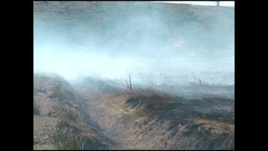 Incêndio incomoda moradores de Presidente Kennedy, no ES - Conhecido como turfa, substância queima vegetação por baixo da terra.
