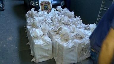 Polícia faz apreensão recorde de cocaína em Corumbá (MS) - O carregamento de quase uma tonelada e meia seria levado até São Paulo