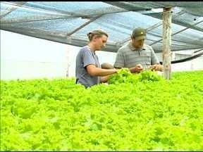Economia de água gera lucro no campo - Agricultor de Erechim, RS guarda a água da chuva para irrigar as lavouras.