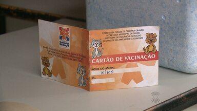Vacinação anti-rábica é realizada neste sábado em Campina Grande - Objetivo é proteger cães e gatos contra a raiva porque vacina e soro humanos contra a doença estão em baixa nos estoques de todo o país.