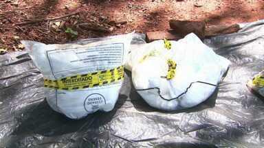 Dois agricultores são presos com grande quantidade de agrotóxicos ilegais - Embalagens eram artesanais e possivelmente produzidas no Paraguai.