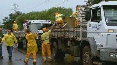 São Carlos realiza mutirão de limpeza contra a dengue - São Carlos realiza mutirão de limpeza contra a dengue