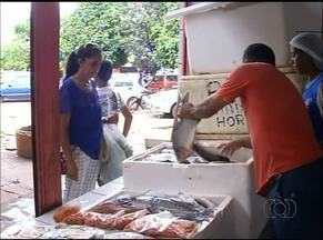 Quaresma aumenta o consumo de pescado no Tocantins - Quaresma aumenta o consumo de pescado no Tocantins