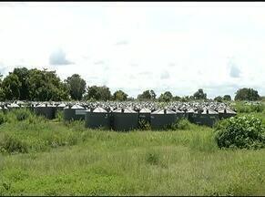 Agricultores na região sudeste do TO enfrentam período de estiagem por falta de cisternas - Agricultores na região sudeste do TO enfrentam período de estiagem por falta de cisternas