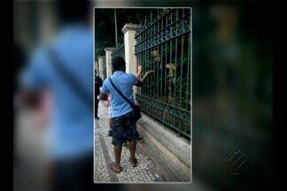 Pessoas são flagradas alimentando macacos de Bosque, em Belém, com guloseimas - Várias pessoas são vistas oferecendo doces e diversos alimentos inadequados aos animais silvestres através das grades do Bosque Rodrigues Alves.