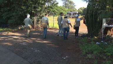 Para evitar a dengue a prefeitura de Maringá intensifica a fiscalização - Os agentes passam no mínimo quatro vezes em casa residência
