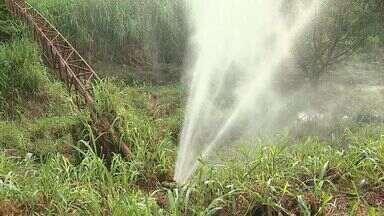 Desperdício de água potável em Ribeirão se transforma em 'chafariz' - O vazamento é tão grande que a água chega a atingir mais de quatro metros de altura.