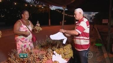 Festa em Jaboatão chama atenção para risco de extinção da pitomba - Fruta nasce em árvore nativa da Mata Atlântica que corre risco de extinção.