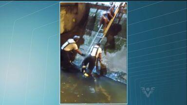 Bombeiros resgatam homem que caiu no canal em Santos - Imagens mostram resgate dos bombeiros a um homem que caiu no canal.