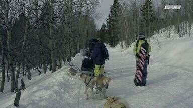 Trenó De Cachorros No Alasca
