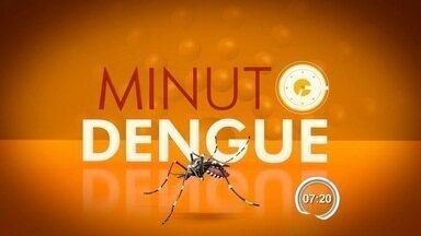 Minuto Dengue: saiba mais sobre os sintomas da doença - Quadro traz informações sobre a dengue. Vale do Paraíba enfrenta epidemia da doença.