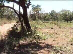 Corpo de jovem encontrado em Palmas ainda não foi identificado - Corpo de jovem encontrado em Palmas ainda não foi identificado