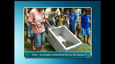 Projeto na comunidade Correio do Tapará desenvolve projeto de preservação de quelônios - Há dois anos o projeto é realizado. Localidade fica há cerca de duas horas da cidade de Santarém.