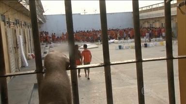 Rebelião em penitenciária deixa sete mortos e cinco feridos na Bahia - Uma briga entre duas facções rivais terminou numa rebelião na Penitenciária de Feira de Santana, na Bahia. Sete presos fora m assassinados e cinco ficaram feridos.