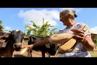 Pessoas da terceira idade dedicam vida ao campo em Tocantins - Agentes de saúde da Zona da Mata recebem treinamento para atender idosos na zona rural.