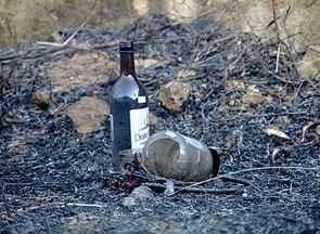 Fogo destrói plantação de eucalipto em Santa Teresa, ES - Bombeiros suspeitam que incêndio foi provocado por ato religioso.Fogo só foi controlado depois de cinco horas.