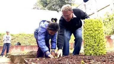 ONG estimula cultivo de horta entre estudantes de escola pública da Zona Leste - Os técnicos levam as mudas e preparam o solo da horta na escola em São Mateus. Já os alunos que têm entre 4 e 6 anos ficam responsáveis pelo plantio e pela rega das plantas.