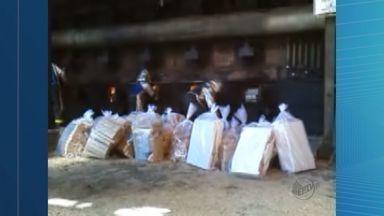 Polícia Federal incinera 4 toneladas de drogas apreendidas na região - Droga foi transportada com forte esquema de segurança até uma usina em Sertãozinho, SP.
