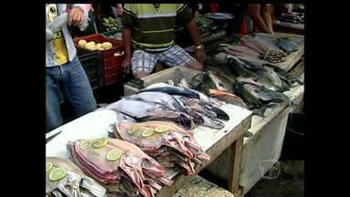 Vendedores que trabalham em feira de peixes de Monte Alegre devem sair do local - Eles têm até quarta-feira (14) para desocuparem boxes. A decisão definida em plenária no mês de junho divide opiniões.